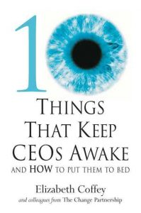 10 things that keep CEOs awake book cover